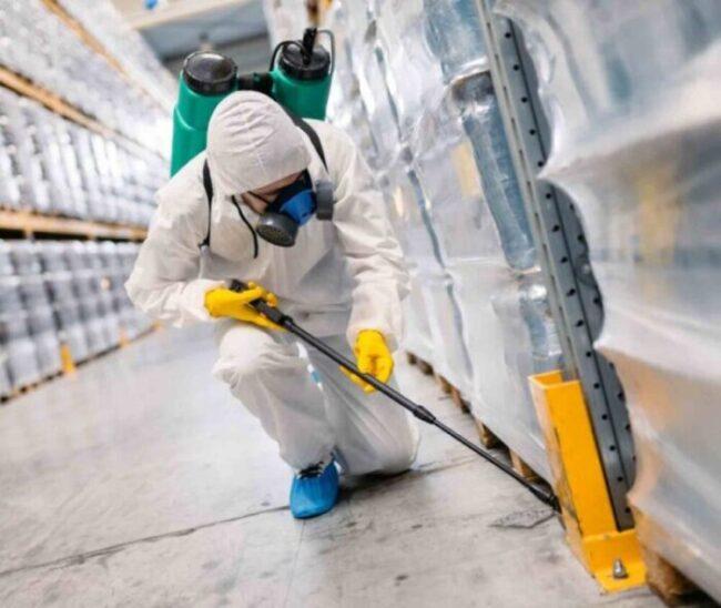 شركات مكافحة النمل بجدة